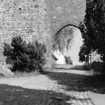 Woldegker Tor II